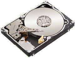 500GB SAS Seagate Constellation